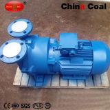 Factory Price 2BV Series Water Ring Vacuum Pump for Sale
