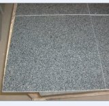 Hot Selling G654 Honed Granite Tile for Wall & Floor