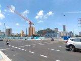 Construction Building Qtp315 (TCT7525-16) Topless Tower Crane