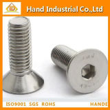 Ss304/16 Hex Socket Countersunk Head Screw