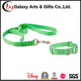 Best Products Polyester Green Plain Dog Collar/Pet Leash