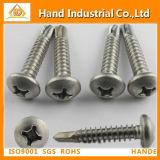 Ss304/316 DIN7504n Phillips Pan Head Self Drilling Screw