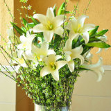 Best-Selling Pure White Decorative Artificial Lily Flower