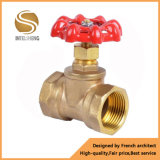 Brass Globe Valve and Stop Valve