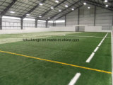 Prefab Steel Tructure Sports Complex with High Quality