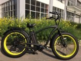Most Popular Electric Bicycle in The World Ebike Factory