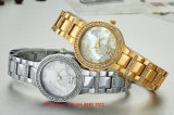 Graceful Lovey Quartz Women′s Watch with Alloy Strap Fs632