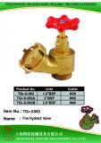 """Brass Fire Hydrant Valve: 1-1/2""""Bsp-D38/2""""Bsp-D50/2-1/2""""Bsp-D65"""