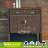 Hotel Cabinet (DH-9818)
