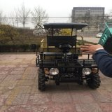 2 Wheel Drive Hydraulic Tipper Power Steering Farm UTV