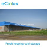 Large Size Low Temperature Fresh Keeping Cold Room for Vegetables and Fruits