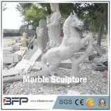 Marble Sculpture--Handcarved Sculpture and Animal Statue for Landscape