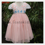 Peach Chiffon Tulle Baby Girls Dress for 2t to 10t