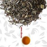 Op Tea with Peppermint Tea Mint Aroma Tea