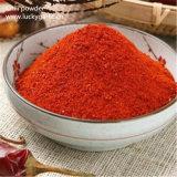 Wholesale 100% Pure Nature Paprika Powder Spices Bulk Red Chilli Powder