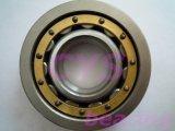 Nj Series Single Row Cylindrical Roller Bearing
