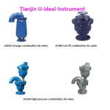 Combination Air Valve for Sewage