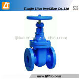 Cast Iron Gate Valves Dn 50