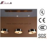 European Suspension 3 Heads Iron Pendant Lamp for Hotel Project