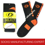 Men′s Cotton Baseball Sport Sock