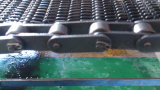 Stainless Steel Chain Conveyor Belt (For High Temperature)