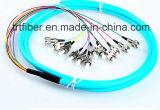 12 Core FC Fiber Pigtail