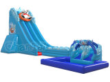 North Pole Bear Inflatable Water Slide for Water Games (chsl1112)