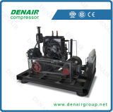 Air Cooled High Pressure Piston Screw Compressor (DT/DV seris)