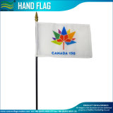 Hand Held Flags for Events, Promotions (J-NF10F01004)