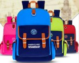 Premium School Bag/School Backpack Bag (SGS/BSCI/RoHS/ISO9001 Approved)