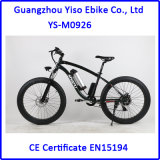 Electric Big Tire Snow Fat E-Bike with Torque Green Power