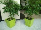 Fiberglass Flower Pot, FRP Planter Pot, GRP Fiberglass Tree Pots