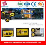 Gasoline Generator Set for Home and Outdoor (SP12000E2)