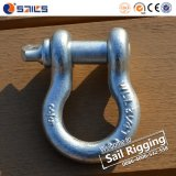 Steel Forged Chain Screw Pin Bow Shackle
