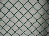 PVC Coated Chain Link Wire Mesh for Safety Fencing