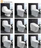 Elegant Bathroom Sanitary Ware Two Piece Toilet (EDA66153)