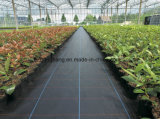 Black 10*10 PP Woven Weed Control Material