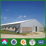 Light Steel Chicken House with Corrugated Steel Sheet and Fiber Glass Insulation Wall (XGZ-pH005)