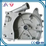 High Precision OEM Custom Auto Casting (SYD0064)