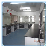 Epoxy Resin Work Top China Lab Bench Furniture (HL-QG-L010)