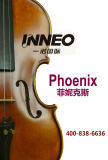 Handmade Cello Phoenix Brand Cello String Intruments (YNC001)