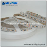 RGBW 4in1 One 5050 Flexible LED Strip Light