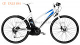 "28""Man Electric Mountain Bicycles (SD-021)"