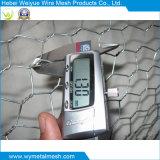 Hot Dipped Galvanized Hexagonal Wire Netting/Mesh