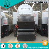 Special Design Dzl Biomass Steam Boiler on Hot Sale!