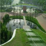 Hot Sale EPDM Waterproof Membrane for Garage /Roof /Basement /Pond /Pool /Planting Roof /Tunnel