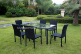 7 PCS of Steel Rattan Table+ Chair Set
