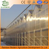 PC Sheet Agricultural Greenhouse Project Hot Sale