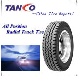 All Postion Truck and Bus Radial Tyre