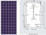 240W Poly Solar PV Modules (BR-P240W)